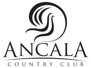 Brian Young PLLC REALTOR - Ancala Country Club Marketing Specialist Agent